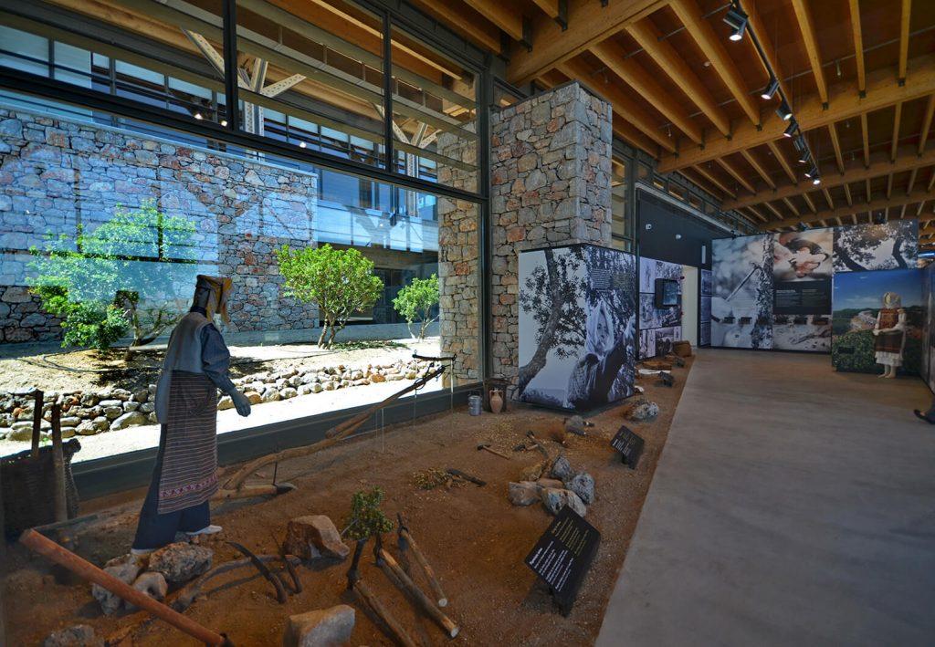 Chios Mastic Museum Emporios Bay Hotel Apartments Studios Book Direct Mastihohoria Mastiha